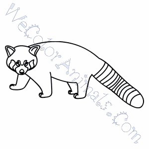 red panda coloring pages red panda coloring pages
