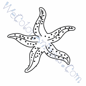 starfish coloring pages - Starfish Coloring Pages