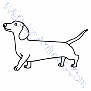 Wiener Dog Coloring Pages