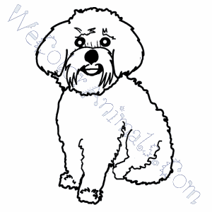 Maltese Dog Coloring Pages