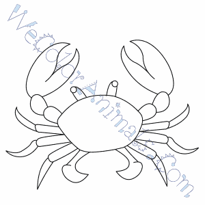 Elegant Crab Coloring Page With Crab Coloring Page