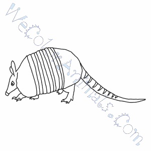 Armadillo Coloring Pages L Is For Lion Coloring Page