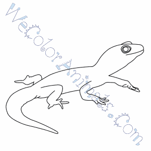 Fabulous Gecko Coloring Page With Gecko Coloring Page Gecko Insect Coloring Page